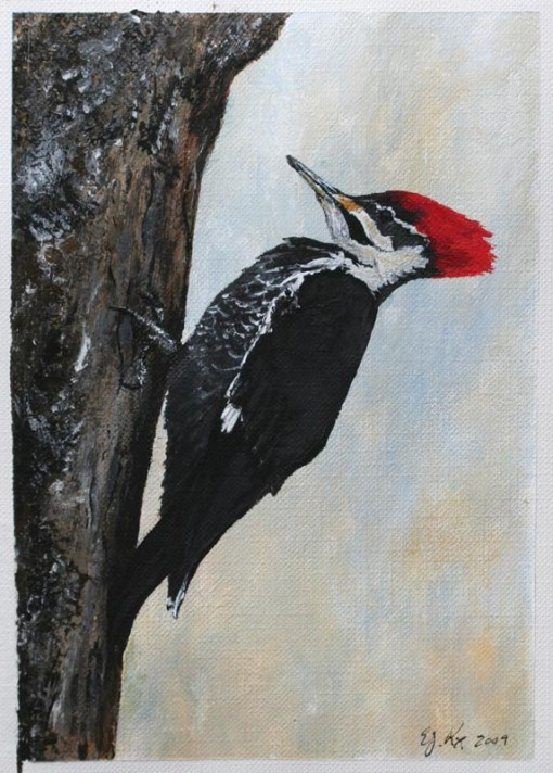 Pileated Woodpecker Drawing Acrylics on Paint Gree...